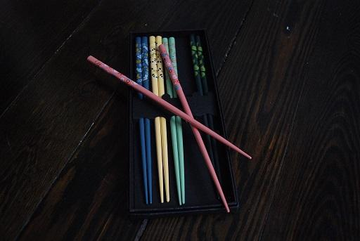 Japanese Chopsticks Set with Animal Pattern